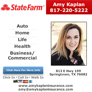 Amy Kaplan - State Farm Insurance Agent Listing Image